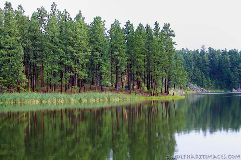 Black Hills, South Dakota, camping, fishing, swimming
