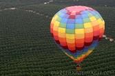 aviation, hot air balloon, Temecula, wine country