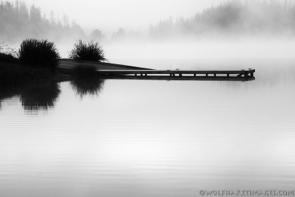 Steamboat lake, fog, dawn, Silver Efex Pro 2, Nik software, black and white photography, calm, quiet, serene