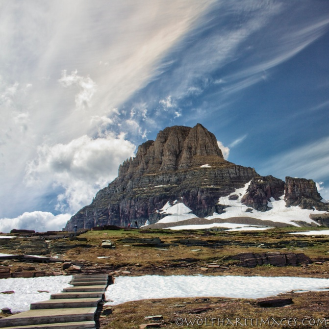 Glacier National Park, Going to the Sun Highway, Logan Pass, bighorn sheep