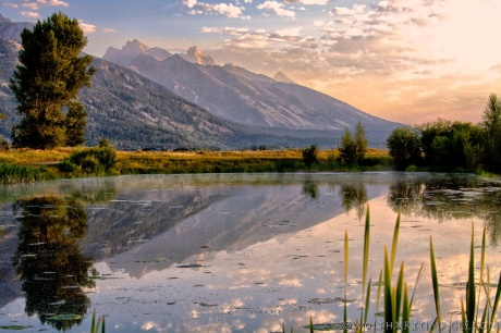 Tetons at sunrise reflected in a pond