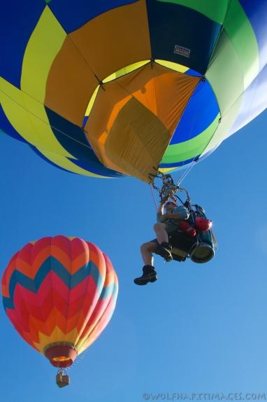 Eyes to the sky, balloon festival