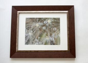 "Photo Lustre paper print, 8""x10"" with white matte."