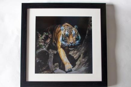 "Photo lustre print 16""x16"", finished size 20""x20""."