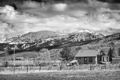 View from the backyard in infrared.