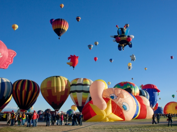 special shape at balloon fiesta