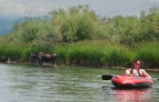 Floating the Teton River